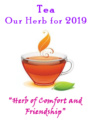 2019 Herbal Forum Artwork