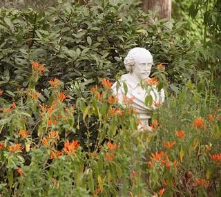 Shakespeare Garden at Festival Hill